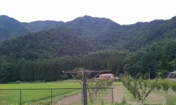 tsubakuro4.jpg
